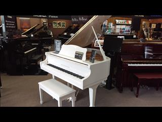 Alex Steinbach Elegance II ~ Contemporary (AS150D iQ) Player Grand Piano