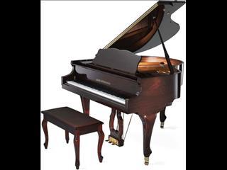 Alex Steinbach Grand Piano  Elegance Classic(SIG48DKAF)