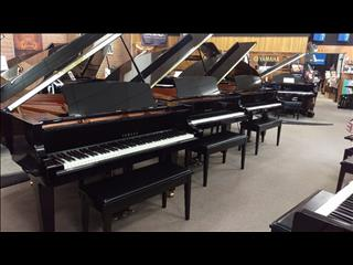 Yamaha Ex Demonstrator Piano Sale ~ C1X 161cm PE Grand Piano #6417930