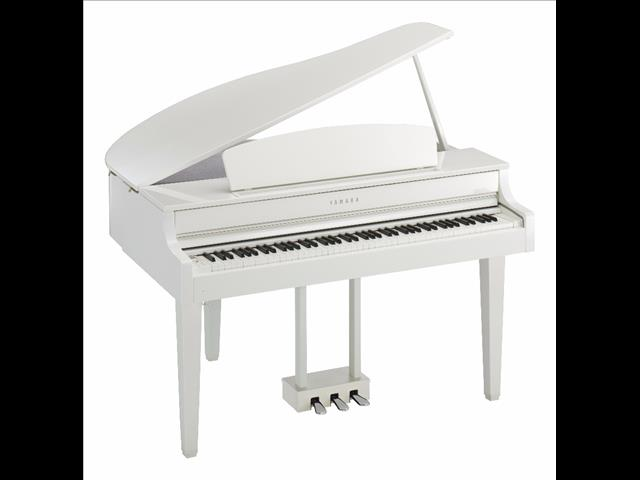 Yamaha Clavinova Digital Piano CLP665GP