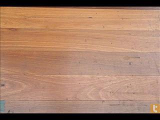 Spotted Gum flooring Very Popular
