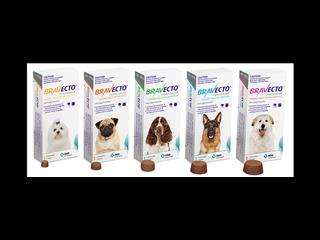 BRAVECTO! Flea & Tick Protection for up to 4 MONTHS! - Call now