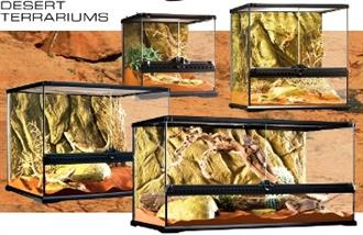 Reptile Terrariums and Dessertariums (reduced to clear, while stocks last)
