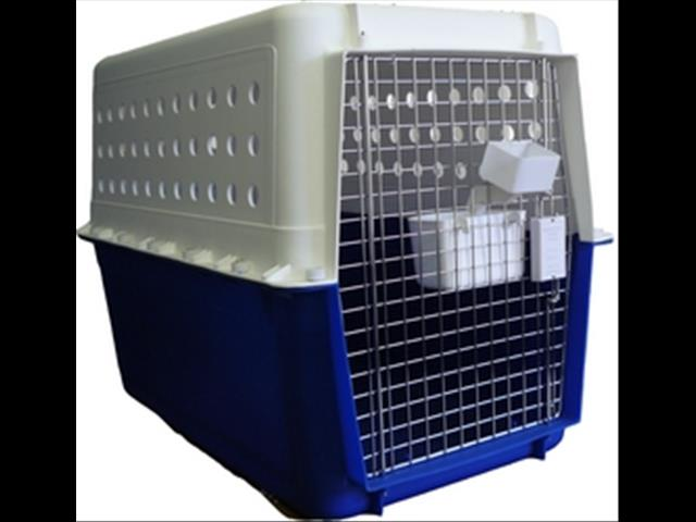 XWX2 Dog Create / Carrier air line approved PP20-50