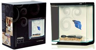 YXY1 Assorted Fighter fish / Betta Fish tanks (reduced to clear, while stocks last)