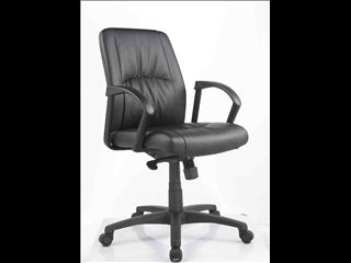 Executive Chair (Civic)