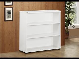Storage Cabinet (Bookcase) 900