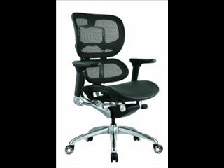 Executive Chair (Ergo 1)