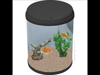 AquaCyl 12L Glass Cylinder Aquarium