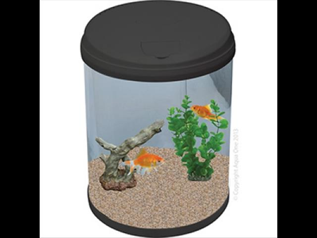 AquaCyl 12L Glass Cylinder Aquarium