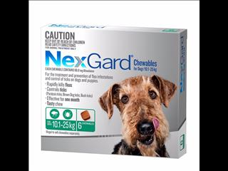 NexGard Large for Dogs weighing 10.1-25 kgs 6 month