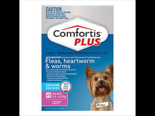 COMFORTIS PLUS - Chewable tablets - 6pk PINK 2.3-4.5KG