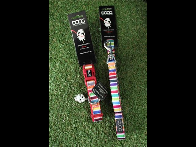 DOOG Collars & Matching Leads.