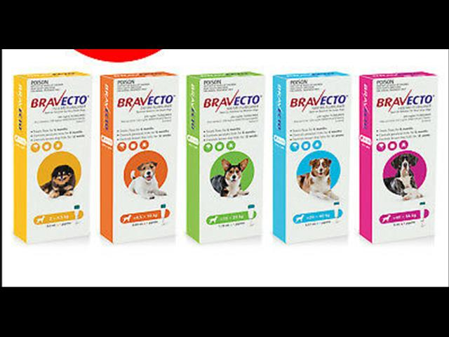 BRAVECTO - Flea and Tick Protection for Cats and Dogs! 3-6 MONTHS!