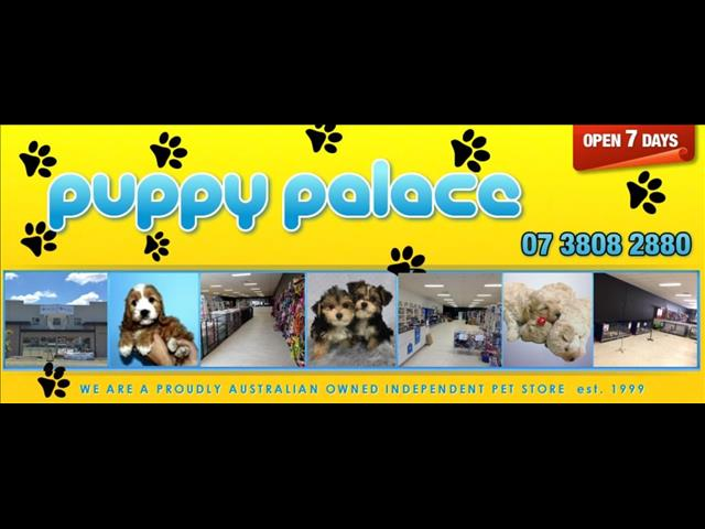 Puppy Palace has been around since 1999.  We also have a wonderful vet & Staff on board.