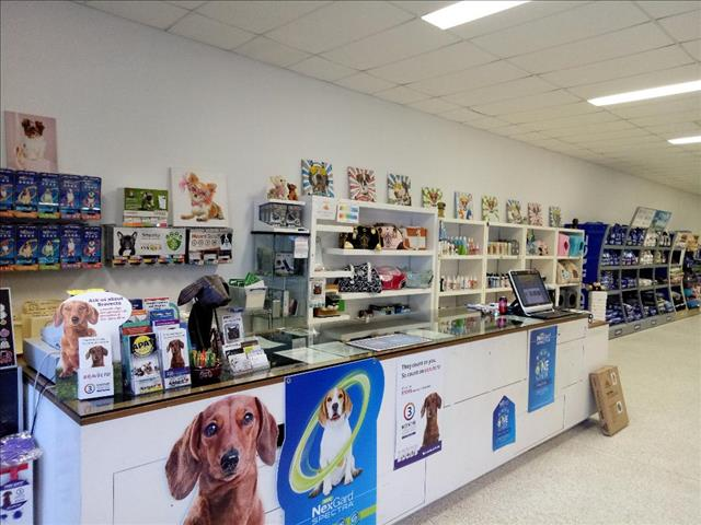 A LIST OF PUPS ARRIVING INTO STORE OVER THE NEXT 6 WEEKS.  At Puppy Palace, Underwood  ......Updated Daily....